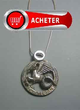 pendentif argent signe capricorne, zodiaque horoscope